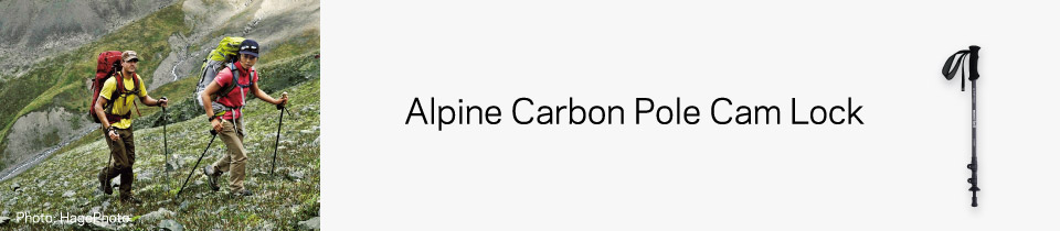 Alpine Carbon Pole Cam Lock